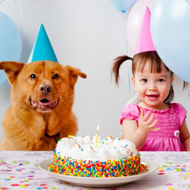 Hund_Geburtstagskind_Tiere