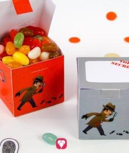 Detektiv Geschenkbox - balloonas