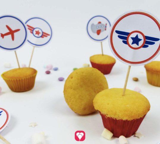 Süße Flugzeug Deko Picker für den Flugzeug Geburtstag