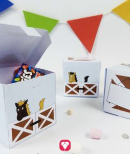Pferde Geschenkbox für den Pferde Geburtstag