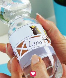 Dekoriere Deine Flaschen mit den Pferde Flaschenetiketten
