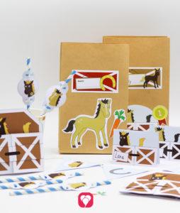 Pferde Geburtstagspaket Basic - balloonas