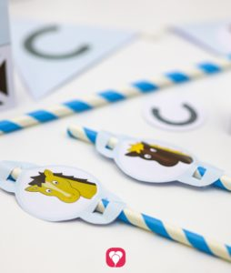 Pferde Geburtstagspaket Strohhalmdeko