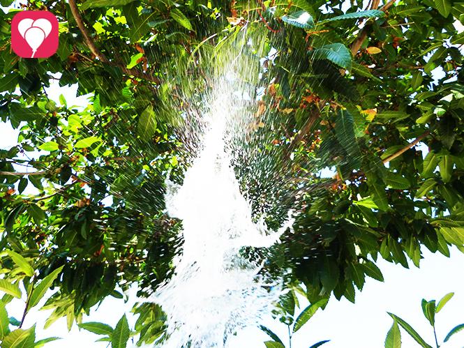 Erfrischende Wasserspiele mit der Wasserbomben Pinata