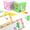 Lama Birthday Package - Place Cards and Giftboxes